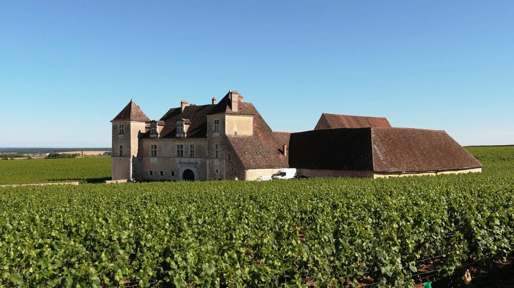Histoire de vigne Bourgogne