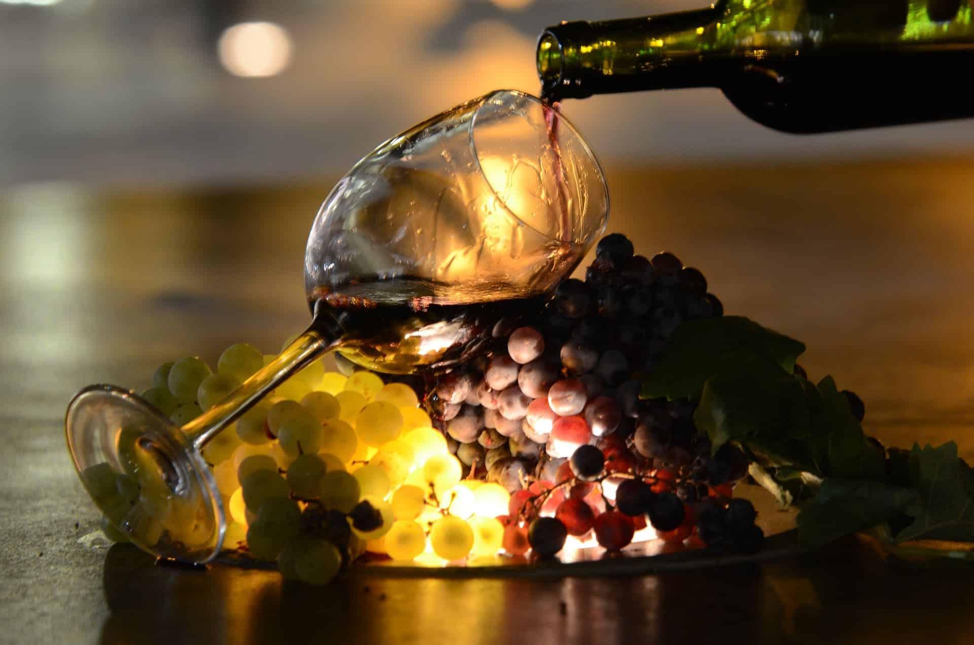 Meilleur vin du Rhône