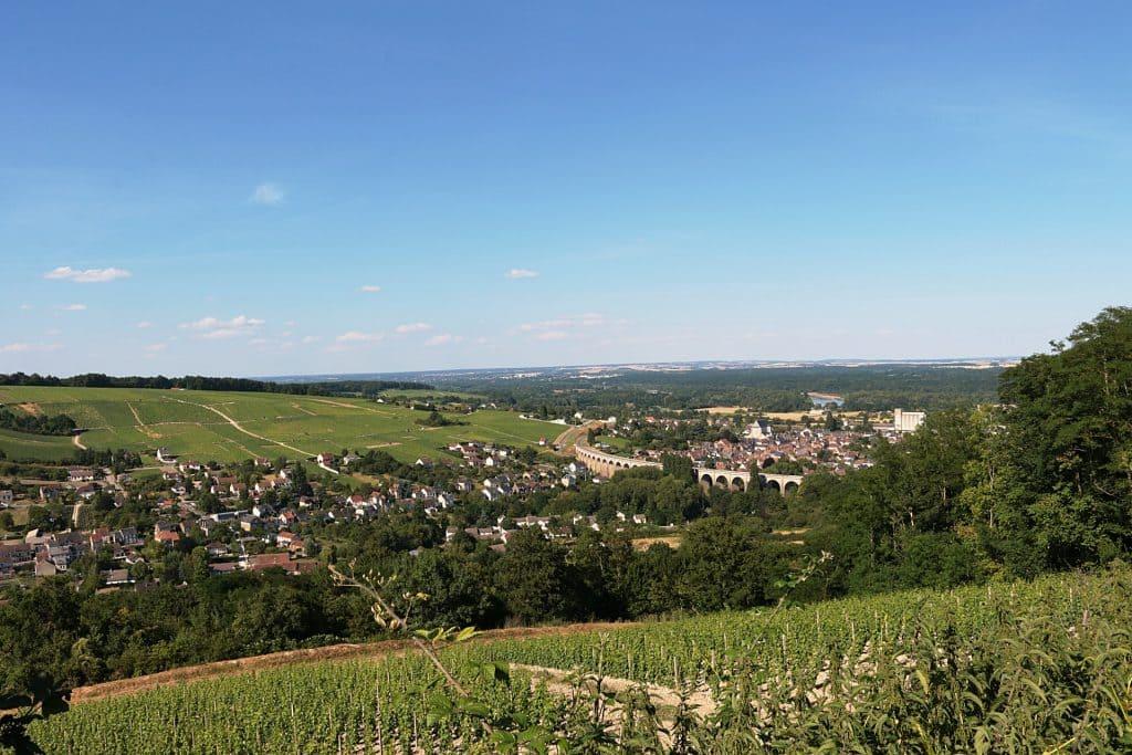 Vignoble Sancerre dans la Loire